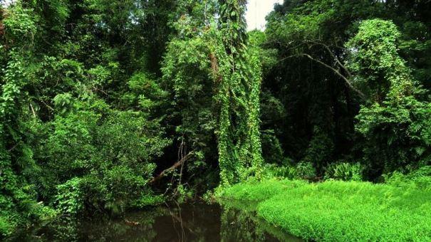 Kahalla Bubula - the spring feeding the Kahalla Reservoir