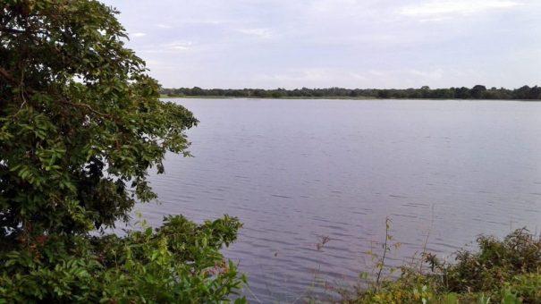 Mamaduwa Wewa (ancient reservoir) buit in the 6th Century <br> photo by : nadun chanaka