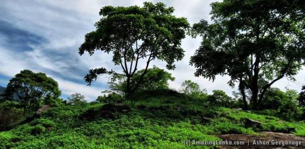 What remains of the ancient stupa - @ Wellawaya Kehaliya Rajamaha Viharaya