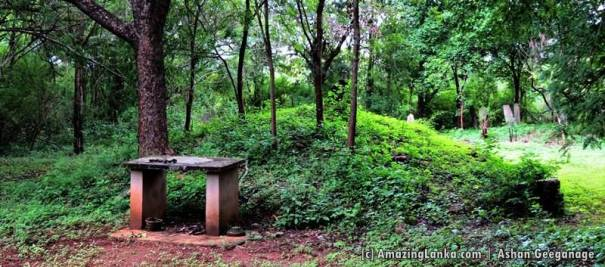 A washed out ancient stupa at the Weherayaya 3rd Sector Archaeological Reserve