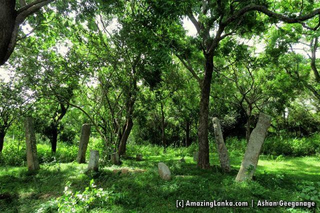 Maha Andarawewa Archaeological Reserve / Andarawewa Walagamba Rajamaha Viharaya