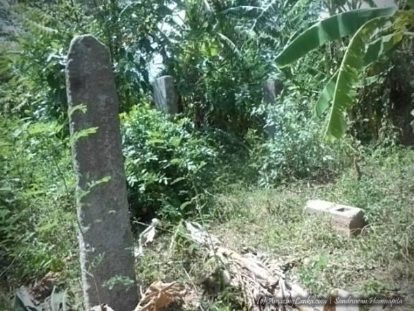 සේරුවිල සමගිපුර පුරාවිද්යා ස්ථානය - Seruvila Samagipura Archaeology Site