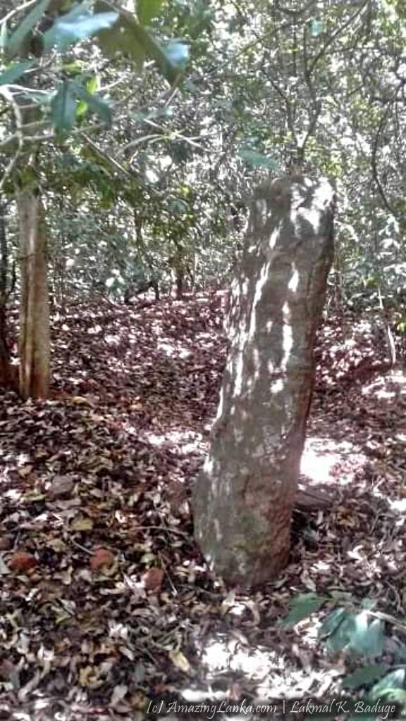 ත්රිකුණාමලය මඩුවාකුලම වැව පුරාවිද්යා භූමිය - Maduwakulama Wewa Archaeological Site in Trincomalee