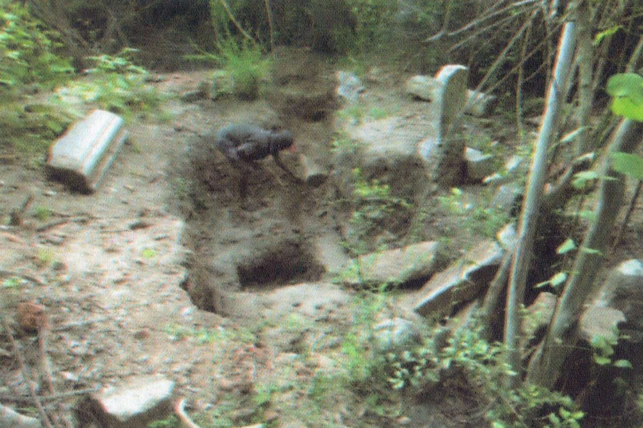වැලිඔය ජානකපුර මහපිටිය බෞද්ධ පුරාවිද්යා නටබුන් - Mahapitiya Archaeological Ruins in Janakapura, Welioya