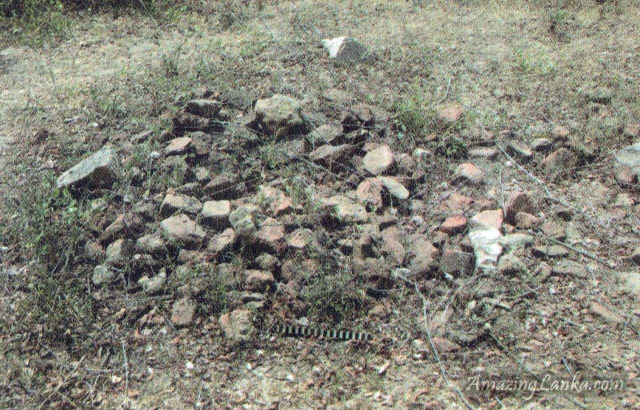 ඔඩ්ඩුසුඩාන් කෙරිඩමඩු පුරාවිද්යා ස්ථානය – Keridamadu Archaeological Site in Mulativu