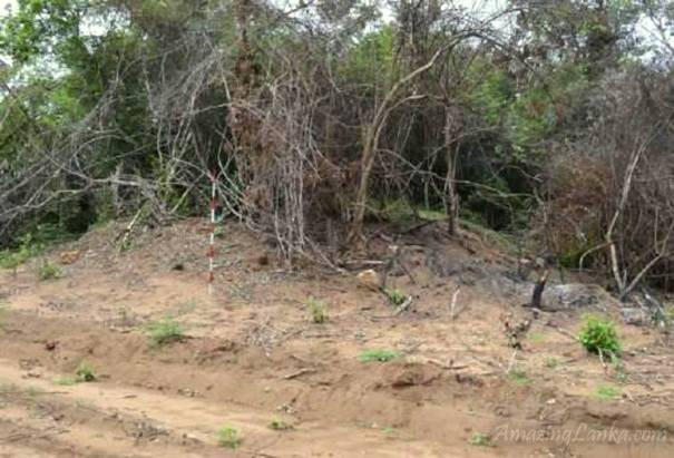 හැළඹවැව ආරාමික නටබුන් I (Halambawewa Aramic Ruins I)