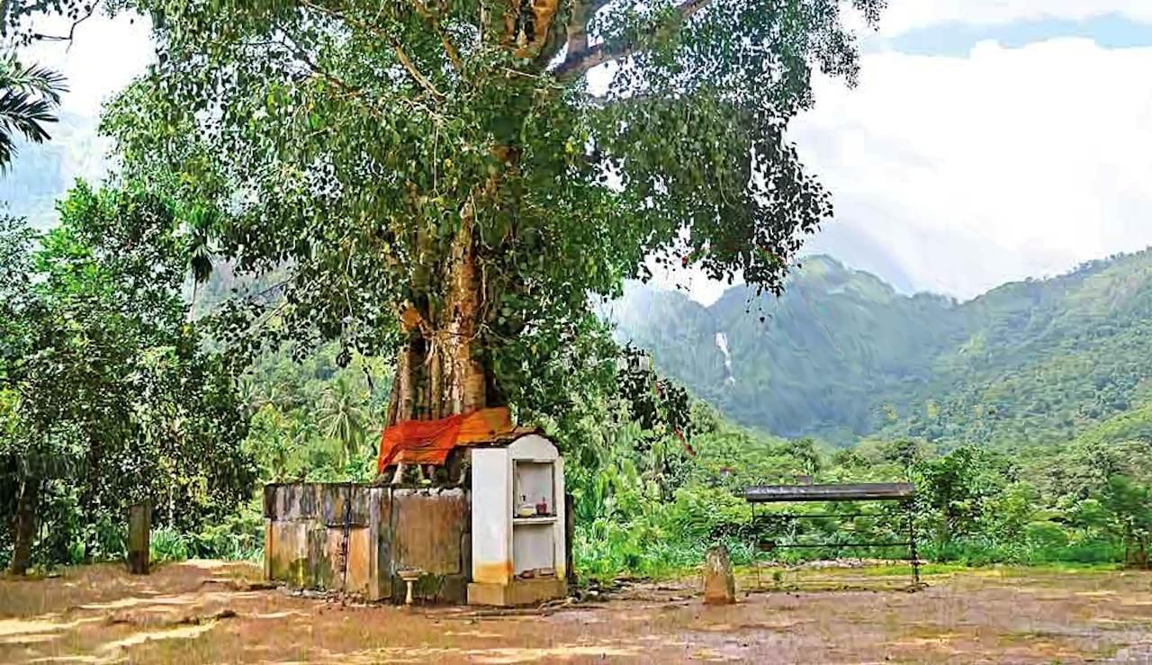 අරම අරහන්ත රජමහා විහාරයේ සිට පෙනෙන අසුපිනි ඇල්ල - Arama Arahantha Rajamaha Viharaya