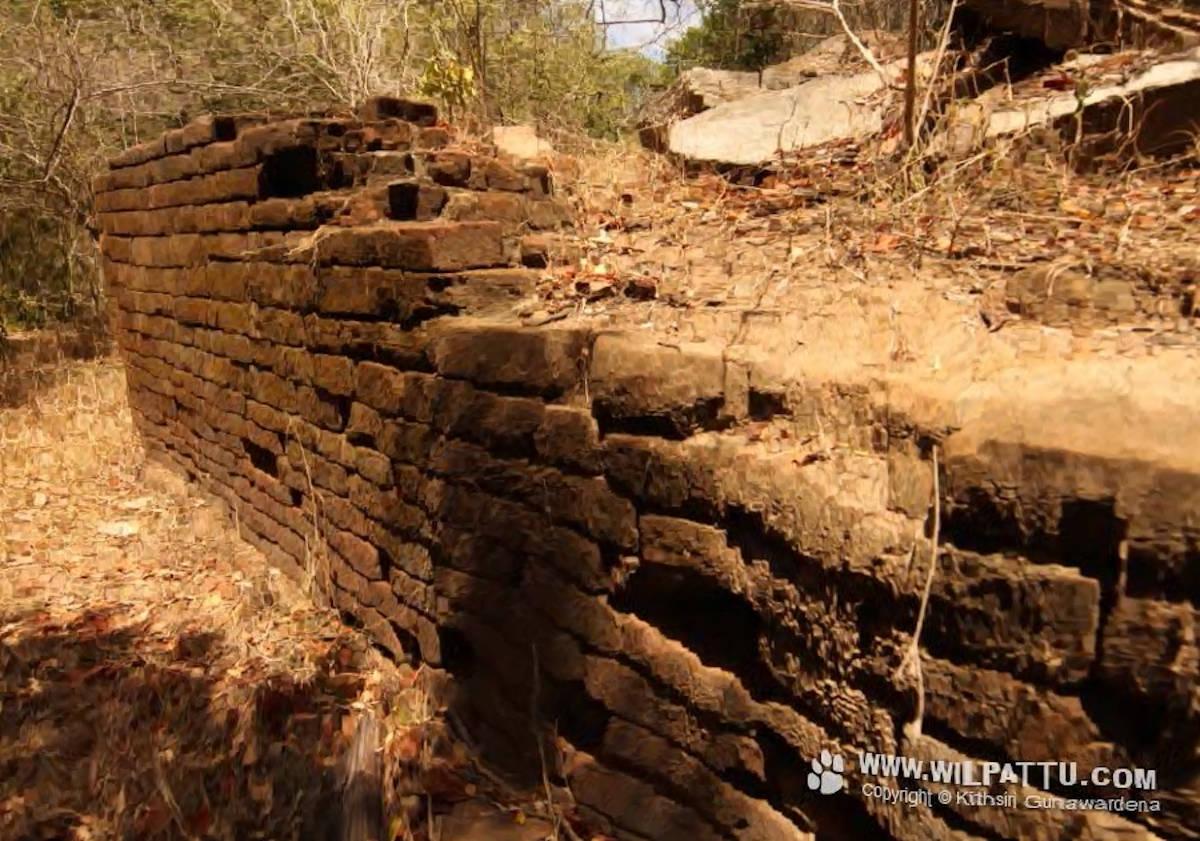 Veli Vehera Archeology site hidden inside Wilpattu National Park - විලපත්තුව තුල සැඟවුණු වැලි වෙහෙර පුරාවිද්යා භූමිය