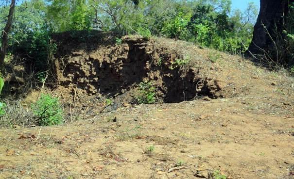 Losing Heritage of Uruthirapuram Buddhist Ruins in Kilinochchi - කෝවිලකින් වැළලෙන කිලිනොච්චියේ උරුතිරපුරම් බෞද්ධ නටබුන් භූමිය.