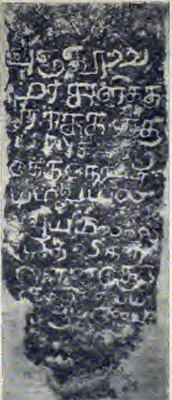 Tamil Inscription in Kalutara