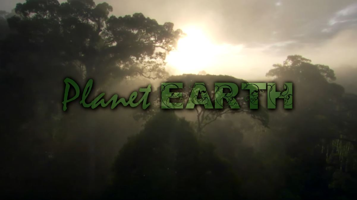 planet earth amazing nature videos