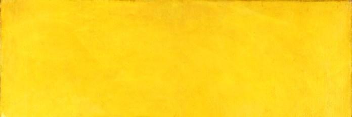 MDJackson_Yellow Header