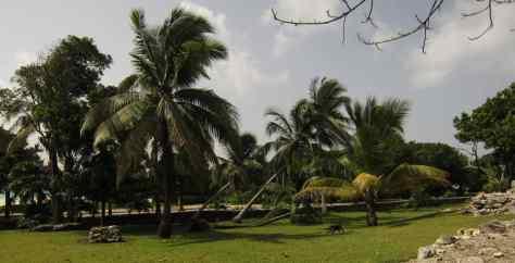 Surrounding of Xaman-Ha