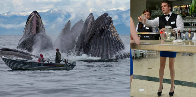 These 16 Perfectly Timed and Spectacular Photos Will Blow Your Mind