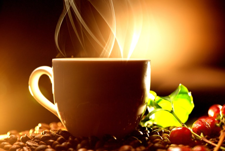 Coffee. Cup of steaming coffee with the real coffee ripe berries