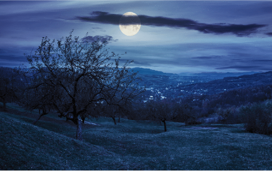 PAGE ARTICLES-Darkness-bigstock-Panorama-Of-Apple-Orchard-On-H-83907455