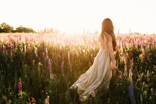 Young Woman Walking On Flower Field At Sunset On Background. Hor