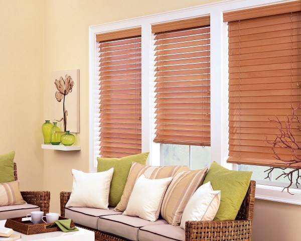 Living Room Windows with Wood Blinds