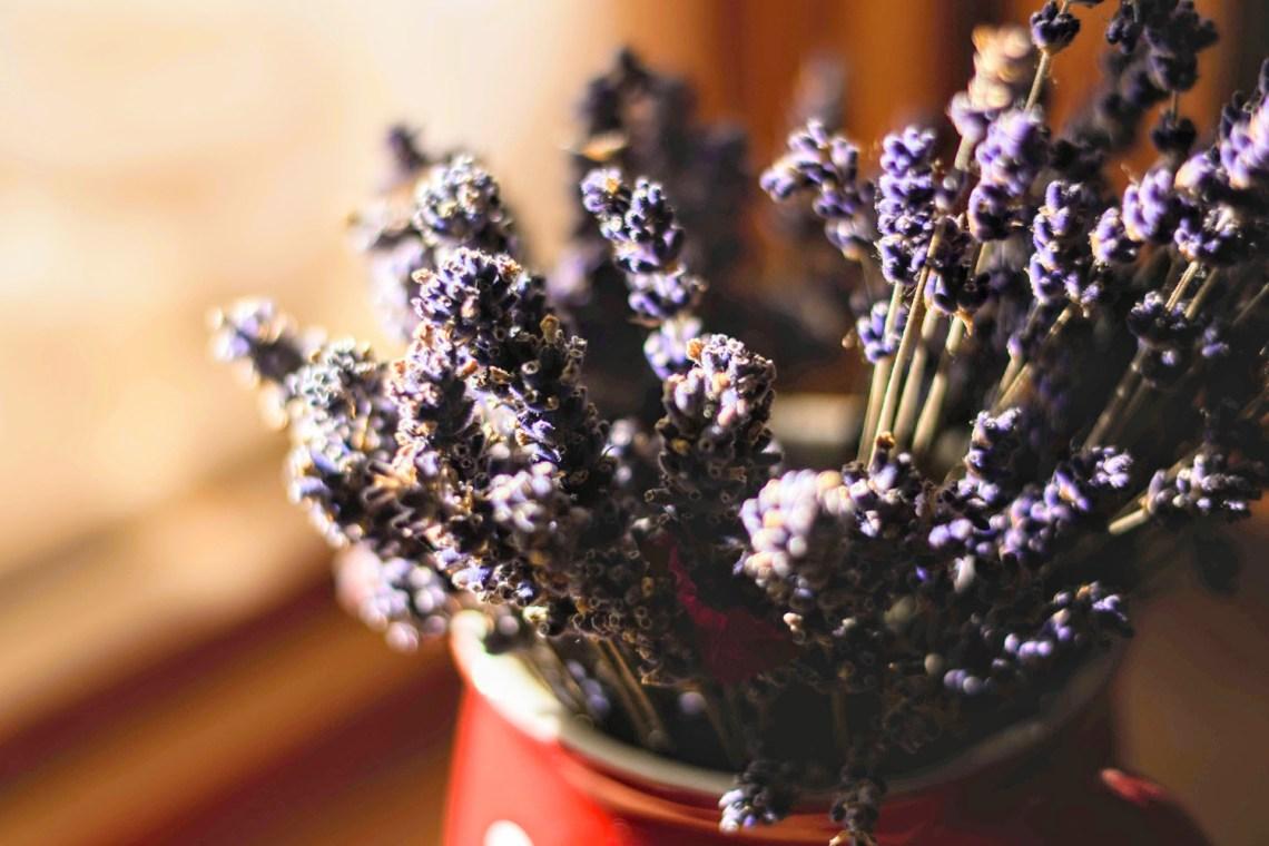 Lavender insomnia