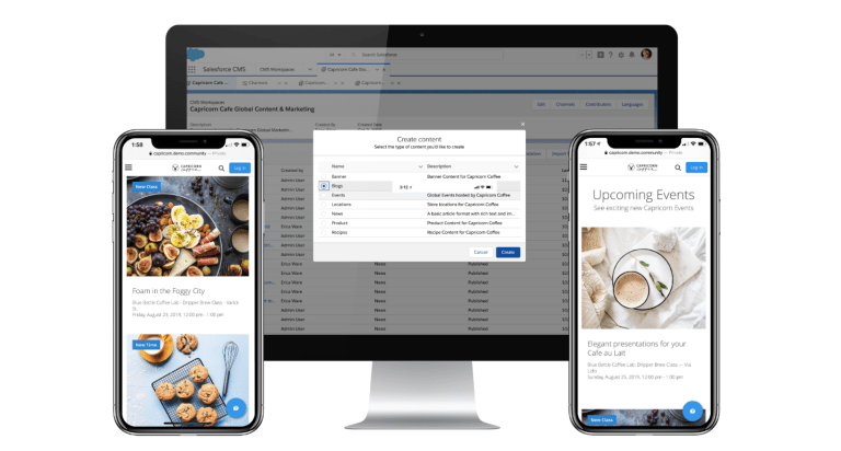Salesforce CMS