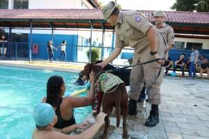 Terapia com cães beneficia mais de 100 crianças com deficiência em Manaus
