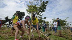 MMA lança programa para impulsionar renda de quem protege as florestas
