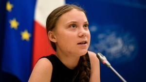 Com doação de R$500 mil Greta Thunberg beneficia Campanha SOS Amazônia