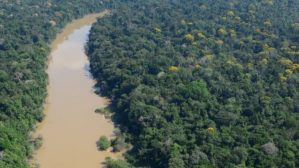 Terras Indígenas são quase 80% das áreas mais atingidas pelo desmatamento na Amazônia
