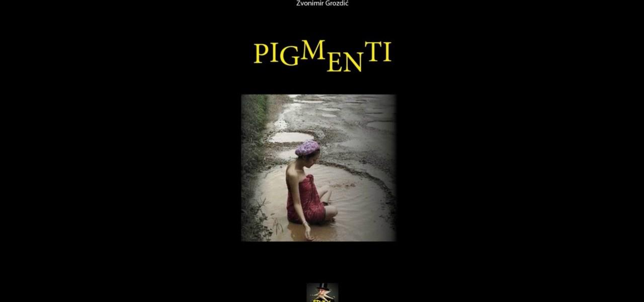 ''Pigmenti'' by Zvonimir Grozdić