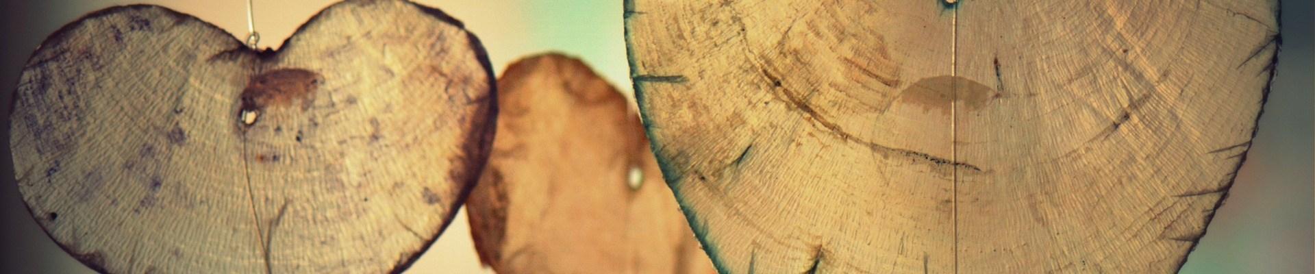 TEST: Karta koju odaberete donosi važan savjet od Kupida!, Jeste li znali? Srce ima svoje polje i inteligenciju! ,Usputna misao, Kada se srce otvori, sve nalikuje proljeću – Sve je svježe i lijepo!
