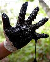 Victory for Ecuadorians! Chevron's Strategy Derails