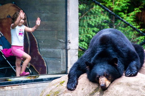 Oregon-Zoo 'Keeping it weird' in Portland