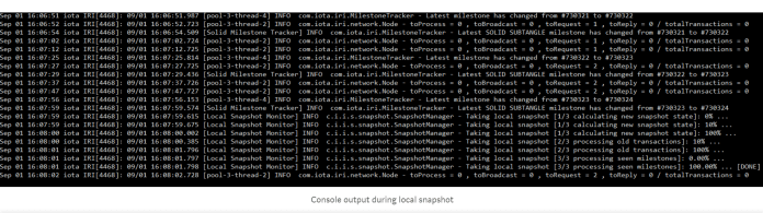 Console Output | Source: IOTA's official Medium blog