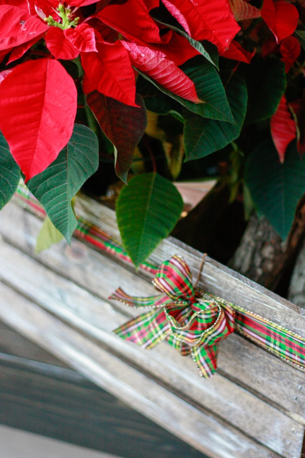 DIY Christmas crate - how to create weather and distressed wood
