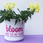 DIY Flowerpot - Planting Inspiration for International Women's Day
