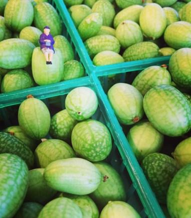 watermelon gerkins-aka baby cucumbers