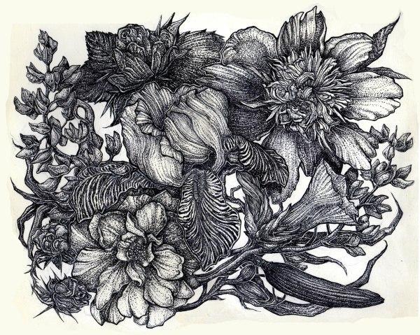 Ink Amberjcross