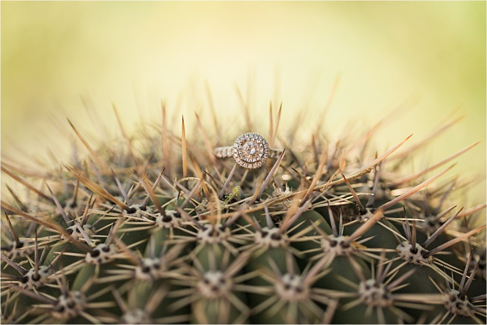 Diamond engagement ring on a cactus.