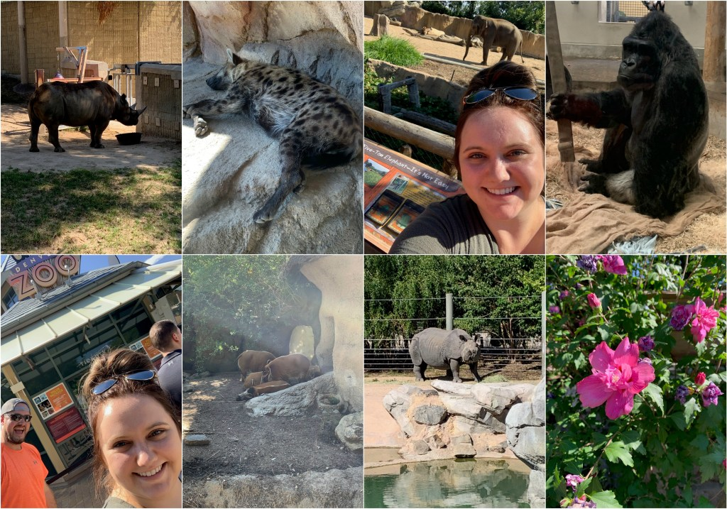 The Denver Zoo was on our Colorado itinerary!