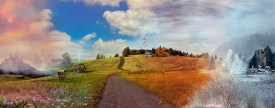 the_road_from_which_there_is_no_turning_by_amberseree-d9py3jj