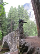 Side crow bridge style