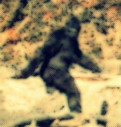 Bigfoot in Michigan?