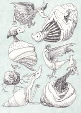 bestiary shells
