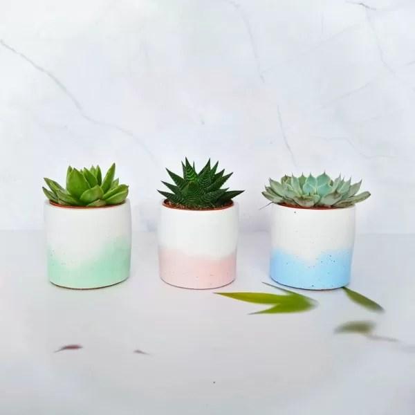 Petits pots pour plantes aux couleurs pastels réalisés par la boutique Zabel