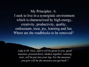 Principles 6