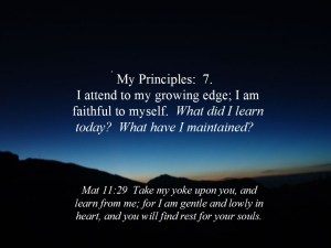 Principles 7