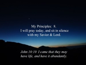Principles 8