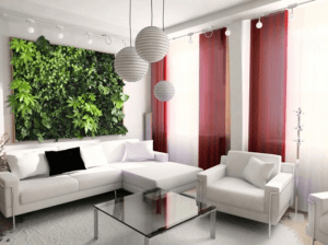How a Living Green Wall Can Improve Your Home