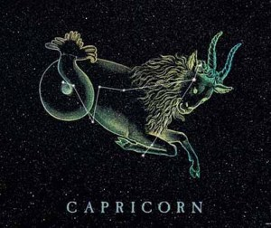 CAPRICORN – YOUR DESIGN HOROSCOPE