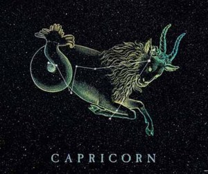 Capricorn Design Horoscope